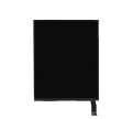 iPad Mini 2 LCD Picture Screen, Replacement screen